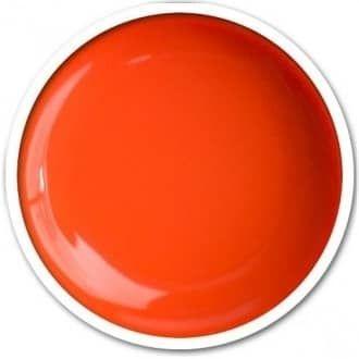 Juicy délicate mandarine