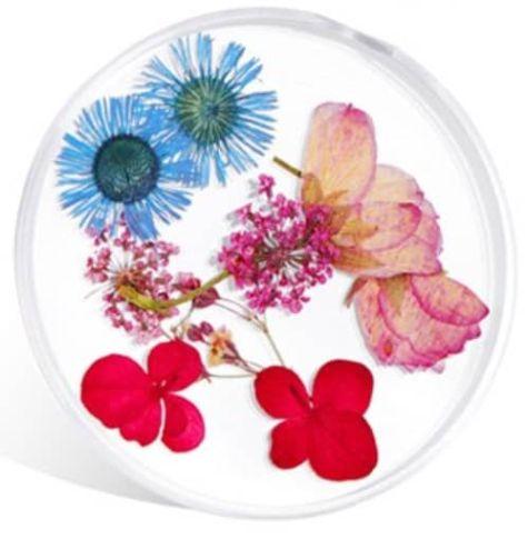 fleur naturelle pour nail art et make up