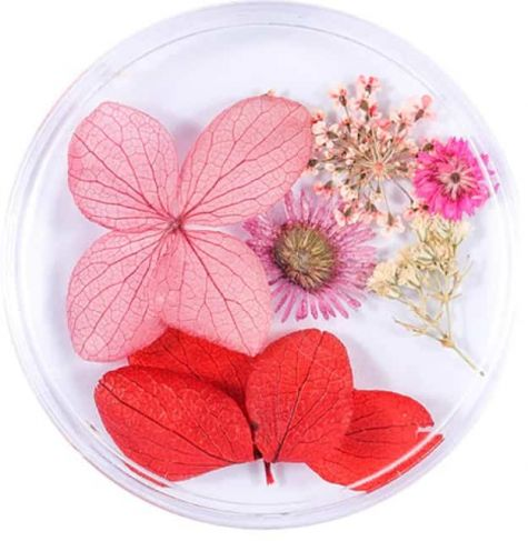 Fleurs naturelles nail art